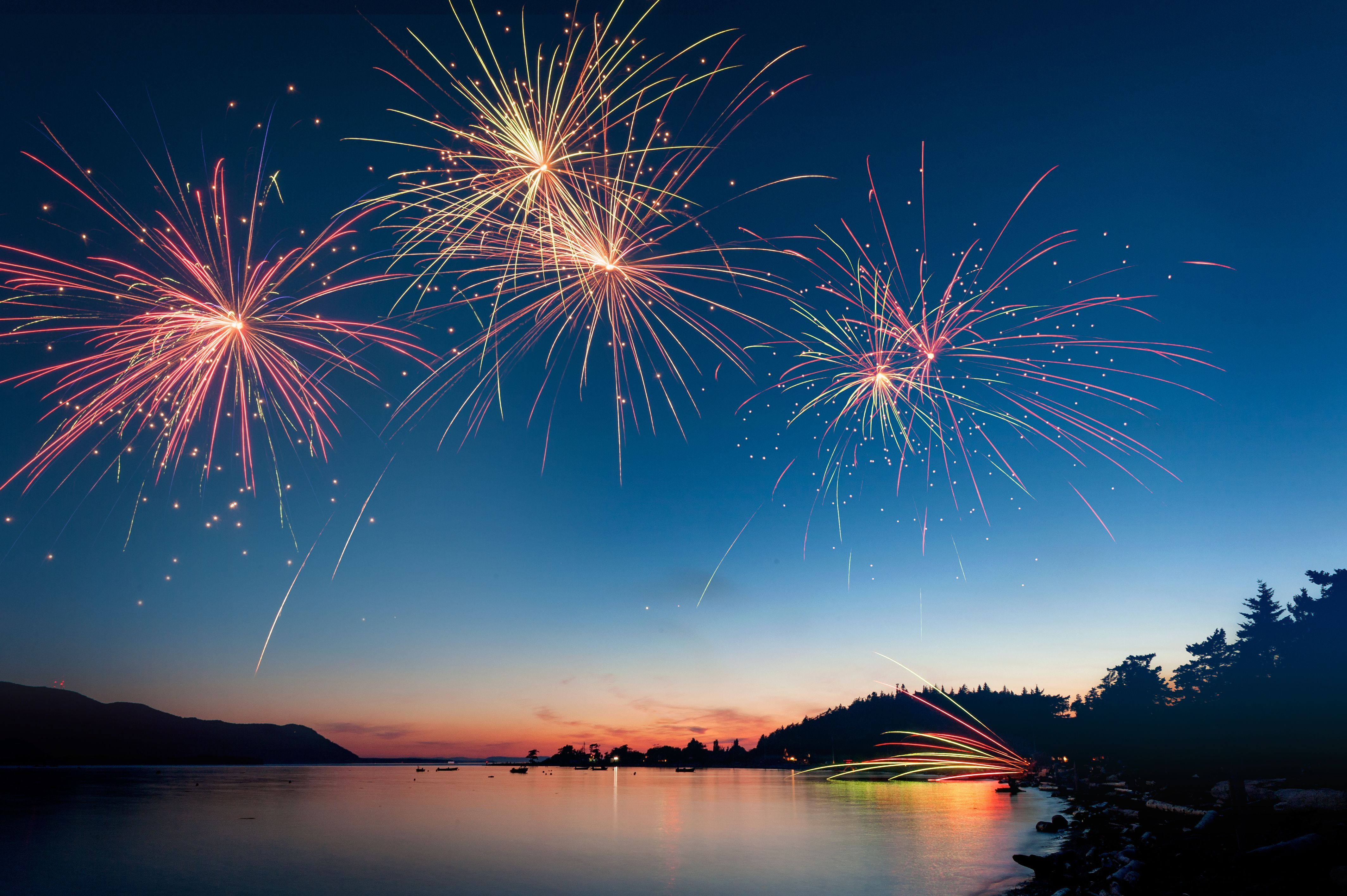 Natural Remedies For Dogs And Fireworks